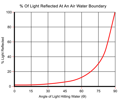 Light Reflected at an Air Water Boundary