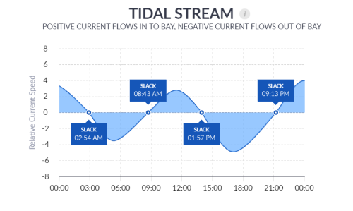 Tidal Stream 1 Day View